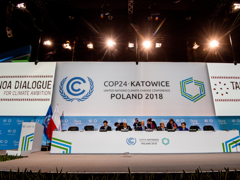 Companies and Business Groups Collaborate to Avoid Double Counting in Carbon Markets